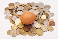 Egg lying on and coins. Isolated Stock Image