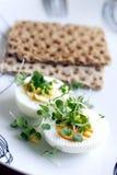 Egg meal Stock Photos