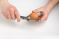 Egg measurement Royalty Free Stock Photography