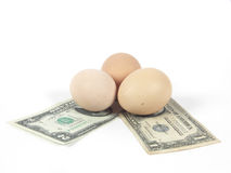 Egg and money Royalty Free Stock Image