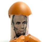 Egg of Money Stock Image