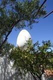 Egg na casa de Salvador Dali em Portlligat Fotografia de Stock