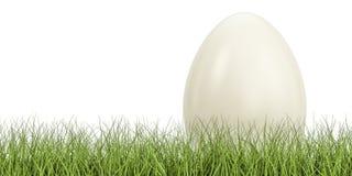 Egg na grama verde, conceito do eco rendição 3d Fotos de Stock Royalty Free