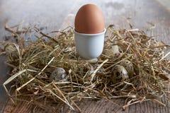 Egg nel nido del fieno sul vecchio fondo di legno della tavola Immagini Stock Libere da Diritti