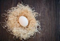 Egg nel nido, punto di vista superiore Immagini Stock