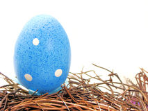 Egg in nest. A single blue painted Easter egg resting in a nest Stock Image