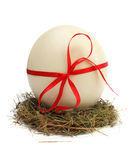 Egg in a nest Royalty Free Stock Image
