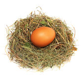 Egg in a nest Stock Images