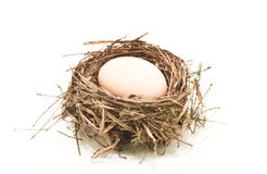 Egg in the nest. Eggs and nest on a white background Stock Photography