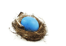 Egg is in a nest Stock Photography