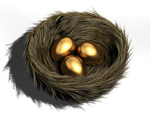 Egg in nest Royalty Free Stock Photo