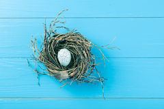 Egg in nest on blue Stock Photography
