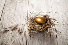 Egg in nest Stock Images
