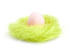 Egg is in the nest of green sisal fibre Royalty Free Stock Photos
