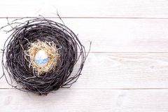 Egg in a nest on a light wooden background stock photos