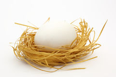 The egg in a nest Stock Photography