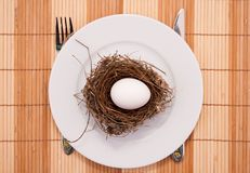 Egg in a nest served on a plate Stock Image