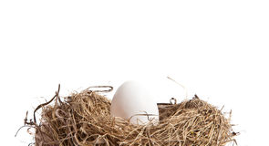Egg in Nest from the Side Royalty Free Stock Photography