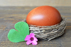 Egg in the nest, spring flower and heart shaped leaf Royalty Free Stock Image
