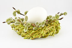 Egg in a nest with twigs and willow catkins on a white background. Easter. Royalty Free Stock Image