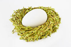 Egg in a nest with twigs and willow catkins on a white background. Easter. Stock Photo