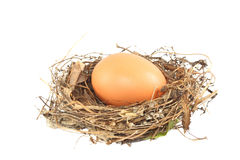 Egg in the nest Royalty Free Stock Images