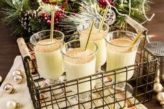 Egg nog. Traditional holiday drink egg nog garnished with nutmeg royalty free stock image