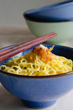 Egg Noodle with Fried Garlic In Bowl. Egg noodle is the famous Chinese food its easy to enjoy eating Stock Photo