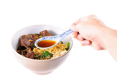 Egg noodles with pot-stewed duck Royalty Free Stock Image
