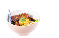 Egg noodles with pot-stewed duck Stock Images