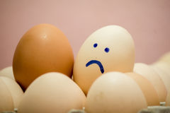 Egg Royalty Free Stock Images
