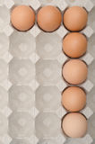 Egg number seven Royalty Free Stock Image