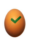 Egg OK. Brown chicken egg, isolated on white, with green OK check mark stock images