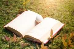 Egg on old book in history of easter concept. In outdoor Stock Image