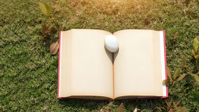 Egg on old book in history of easter concept. Egg on old book paper in history of easter concept outdoor park Stock Photography