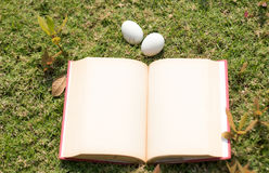 Egg on old book in history of easter concept. Egg on old book paper in history of easter concept outdoor park Royalty Free Stock Photo
