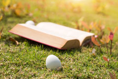 Egg on old book in history of easter concept. Select focus egg on old book in history of easter concept outdoor park Royalty Free Stock Photos