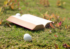 Egg on old book in history of easter concept. Select focus egg on old book in history of easter concept outdoor park Stock Photography