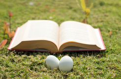 Egg on old book in history of easter concept. Select focus egg on old book in history of easter concept outdoor park Royalty Free Stock Images