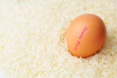 Egg omega plus stock images