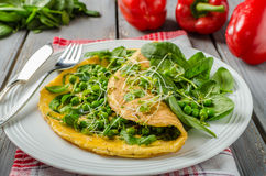 Egg omelette with herbs royalty free stock photography