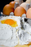 Egg On Flour Stock Photos