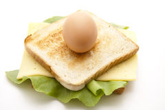 Egg On Sandwich With Cheese Stock Image