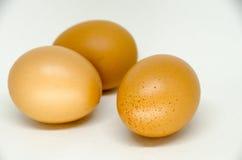 Free Egg On White Background Stock Photography - 96062982