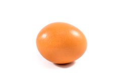 Egg. One egg on a white background Stock Images