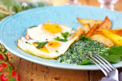 Egg over boiled spinach on blue plate. stock image