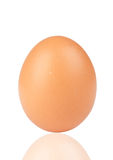 Egg over white background Royalty Free Stock Images
