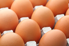 Egg in package Stock Photography