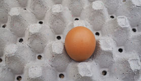 An egg in the package Royalty Free Stock Images