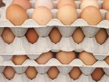 Egg packagings Stock Photo